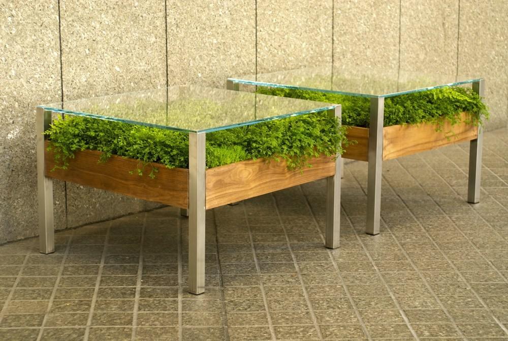 Стеклянная столешница с растениями под ней